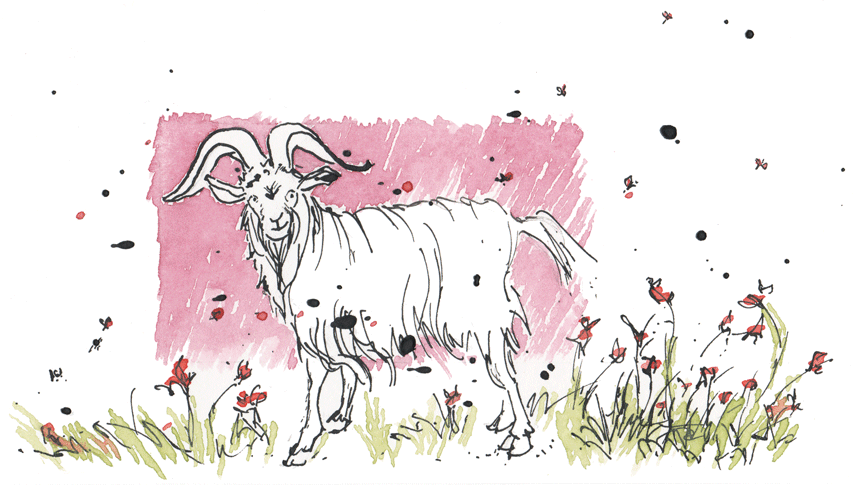 This Goat Does Not Boat.  (Watercolor & india ink, © Melinda Nettles 2015.)