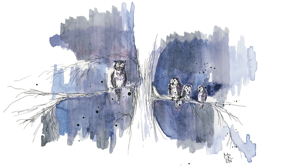 Four Friends. (Illustration of four owls in a tree.  Watercolor & india ink, © Melinda Nettles 2015.)