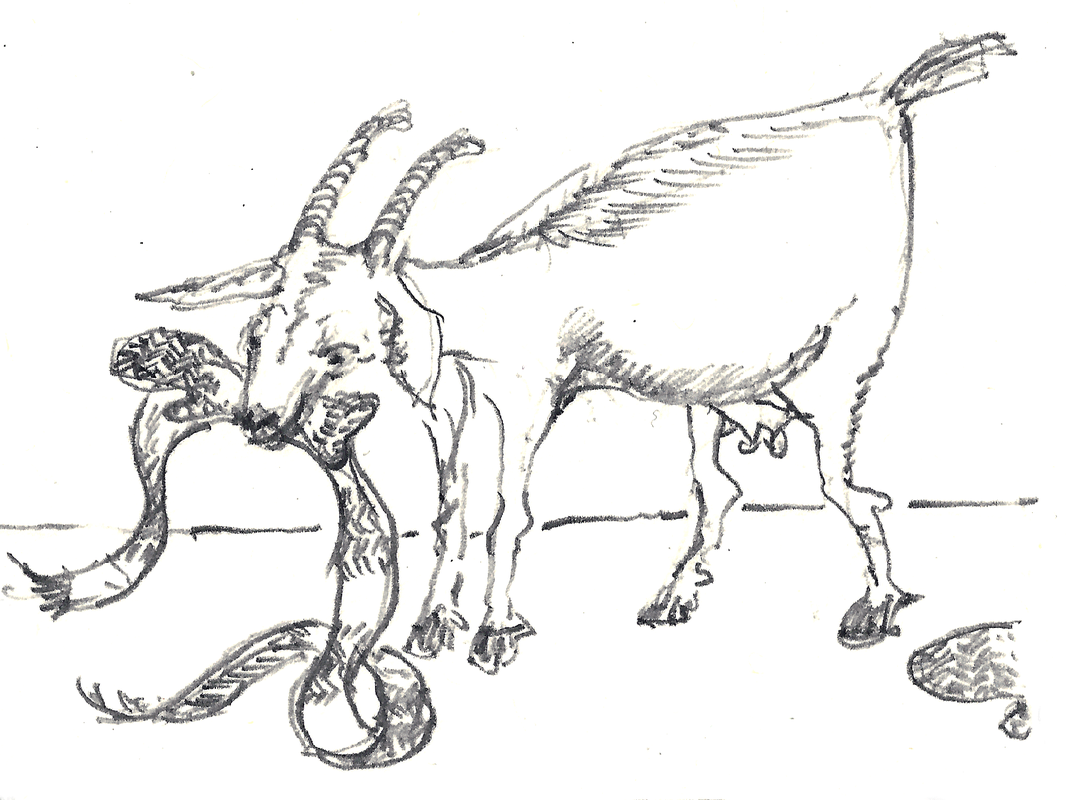 Illustration of a goat eating a scarf and mitten.  Pencil drawing on paper.  © Melinda Nettles