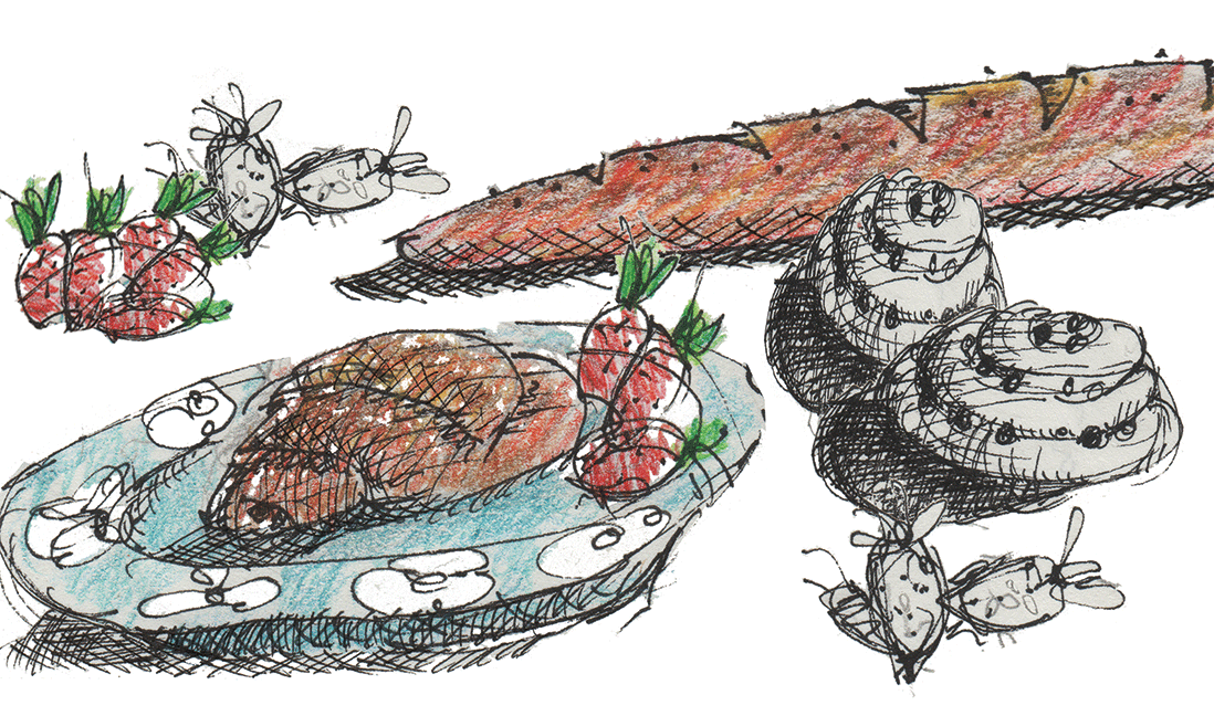 Drawing of pastries, baguette, and strawberries.  Technical pen, colored pencil, and digital tomfoolery.  © 2017 Melinda R. Nettles